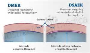 Prostatitis és összetétele