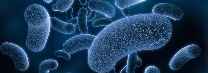 Cross-linking Corneal en el tratamiento de las Queratitis Infecciosas: Meta-análisis