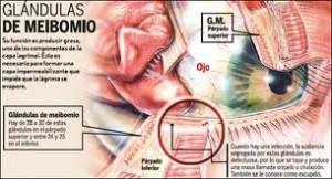parte superior masaje córneo